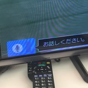 TV画面の音声入力画面・